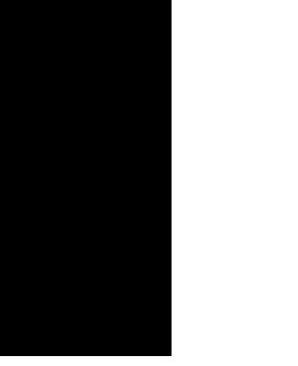 Koripallo