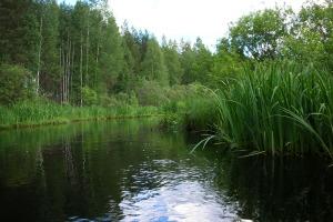 Lue lisää aiheesta Haapajoki